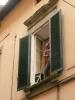 Gangnam-style-Lucca