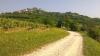 Parenzana, v ozadju Motovun